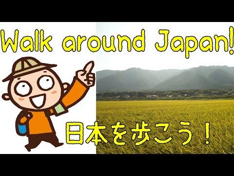 Golden Rice Field (黄金色の稲田) 【JAPAN TRAVEL BLOG】