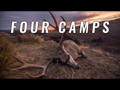 FOUR CAMPS - 2nd Season Colorado Mule Deer Hunt