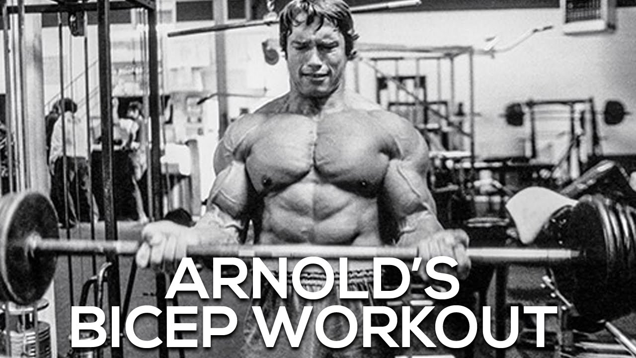 Arnolds bicep workout youtube malvernweather Image collections