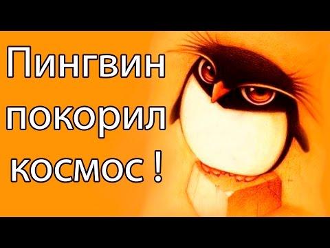Пингвин покорил космос ! ( Learn to Fly 3 )