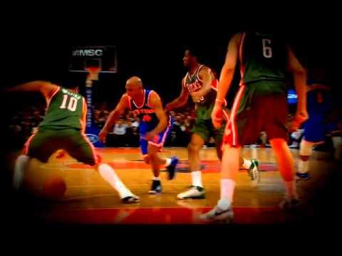 New York Knicks 2010-2011 Season HIGHLIGHTS