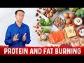 Protein and Fat Burning