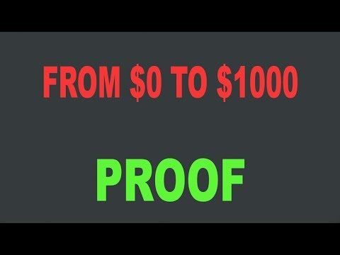 From $0 to $1000 Per Day Challenge Proof - Brko Banks
