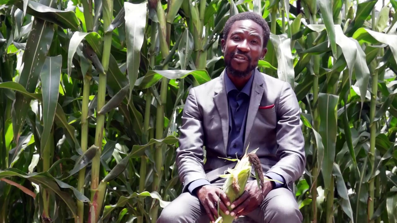 THE PROPHECY CONFIRMATION BY PROPHET MPALONDE PHIRI FOR BUMPER HARVEST IN ZAMBIA