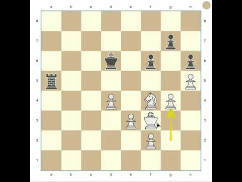 Chess Analysis: ney barros x marcos o chacal (FlyOrDie Website)