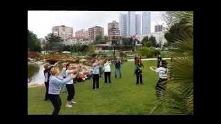 Istanbul-Turkey WTCD 2014 Tai Chi Chuan Qigong Aktiffelsefe