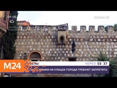 Деньги за авиабилеты и путевки в Грузию вернут в полном объеме - Москва 24