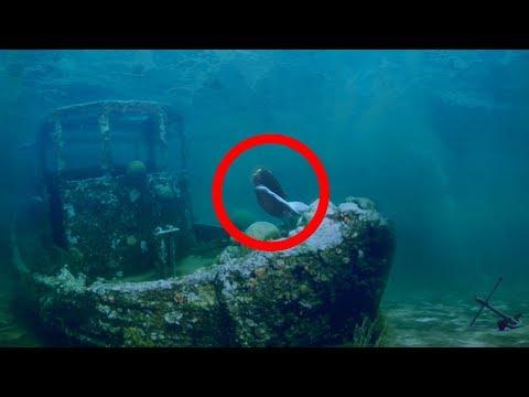 Sirenas: la verdad detrás del mito