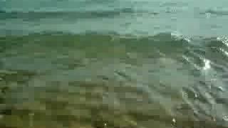 Beach Mt. Eliza 2