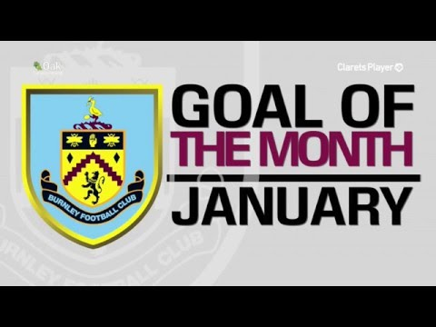 GOAL OF THE MONTH | January