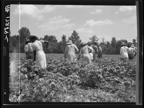 dorothea lange\u0027s black south (during the great depression) youtubedorothea lange\u0027s black south (during the great depression)