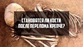 Становятся ли кости после перелома крепче? | DeeaFilm