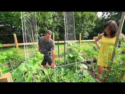 The Rusted Garden Homestead Presents: My Completed Vegetable Garden Toured by CaliKim