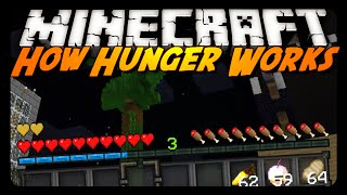 How Hunger REALLY Works in Minecraft!