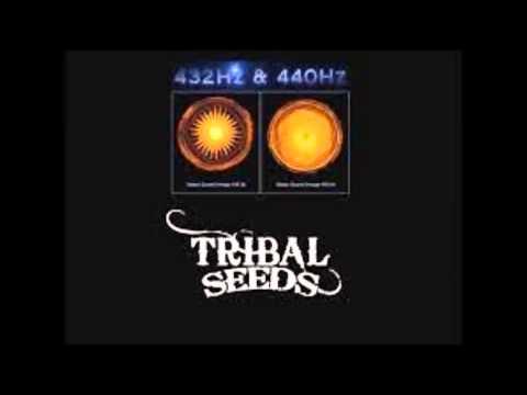 Tribal Seeds - In Your Eyes [432 Hertz]