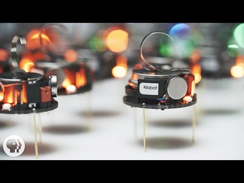 Can A Thousand Tiny Swarming Robots Outsmart Nature? | Deep Look