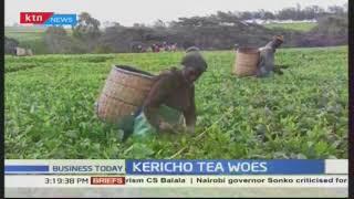 KPAWU Kericho branch rejects Unilever Tea Company's early retirement offer