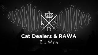 Baixar Cat Dealers & RAWA - R U Mine