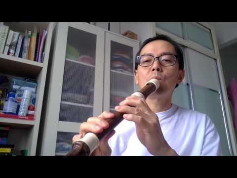 2. Comparing soprano vs alto recorder