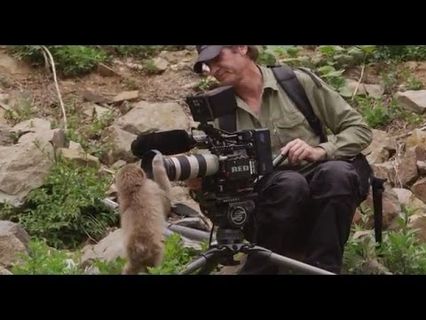 Behind-The-Scenes of Snow Monkeys on Nature on PBS