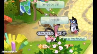 ***** READ DISCRIPTION *******Animal Jam sad story - A homless girl and her dog