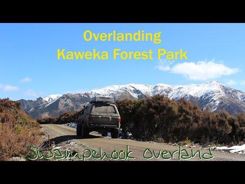 Kaweka Forest Park - Solo Overlanding