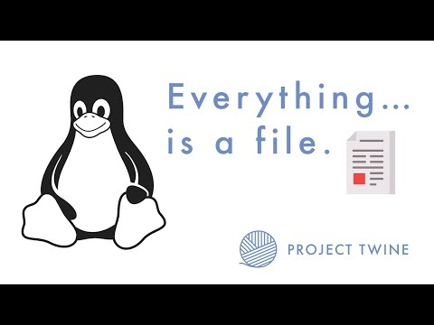 """""""Everything is a file"""" in UNIX"""
