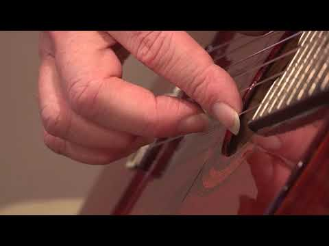 Video 5 Tone Color Parameter 5 Amount of weight from the fingertip onto the string AA0160
