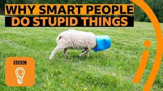 Why smart people make stupid mistakes | BBC Ideas