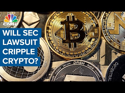 SEC lawsuit will cripple crypto: Ripple CEO