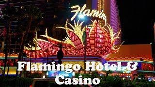 Flamingo Hotel & Casino Las Vegas Tour..Wild habitat,Casino