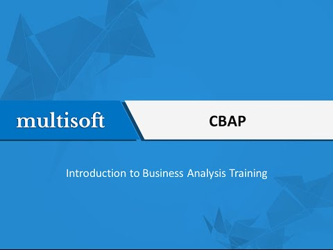 Introduction to Business Analysis Training   Multisoft Virtual Academy