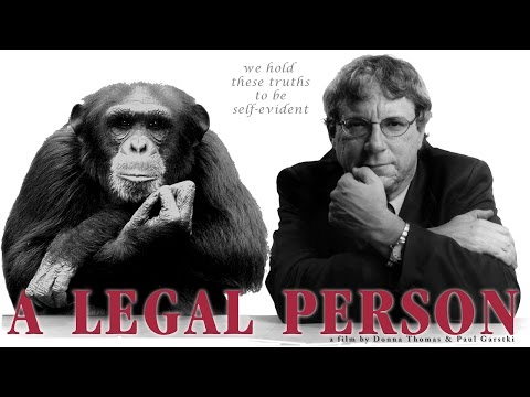 A LEGAL PERSON: A film about Steven Wise and the case for an