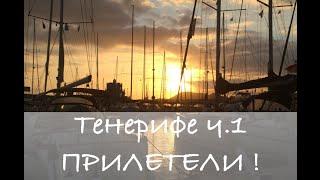 Тенерифе №1. Собака в самолете. Канары - остров Тенерифе. Отдых на Канарских островах.(, 2015-05-28T18:57:55.000Z)