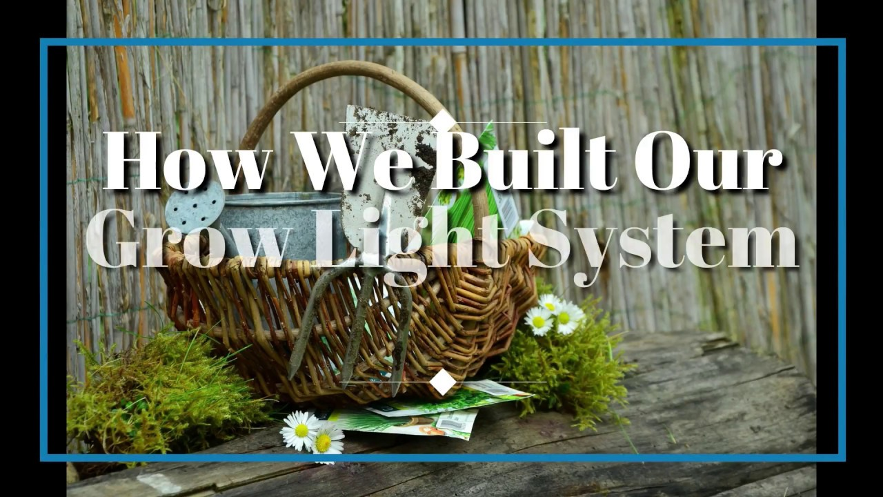 Our Grow Light System Made With Cheap Hyper Tough LED Shop Lights