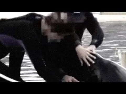 видео: То, что тренеры делают с этим животным, потрясло весь мир до слез...