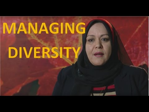 Implementing Diversity Management within Organisations