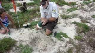 Restoring Seabird Habitat at Midway Atoll w/ Greg Schubert