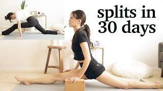 30 day splits challenge | learning to do the splits in 30 days (maybe) | 30 in 30s ep. 2 screenshot 3
