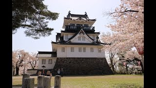 JG☆☆4K 秋田 横手城の桜 Akita,Sakura at Yokote Castle