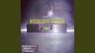 Moonlight Shadow (Warp Brothers Remix)