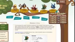 Money birds Дополнительный заработок в интернете - экономическая игра с выводом денег без вложений