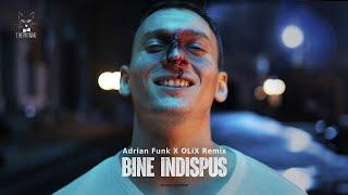 Descarca The Motans - Bine Indispus (Adrian Funk X OLiX Remix)