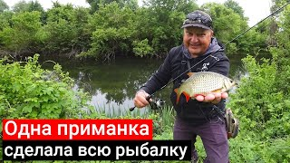 Какая приманка сделала всю рыбалку блесна воблер или силикон 5 видов рыб на спиннинг летом