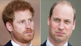 Lip Reading Experts Reveal What Harry Said To William At The Funeral