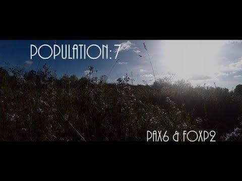 """Population:7 - """"Pax6 & FoxP2"""""""