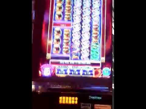 Wild Fire Riches Slot Machine