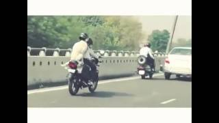 Dog wearing helmet | road safety | incredible India