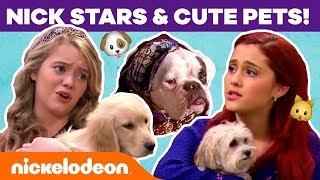 Nick Stars  Cute Pets! w Ariana Grande, JoJo Siwa &amp More!  #NickStarsIRL