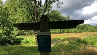 Wandeling door Nieuw Rande in Diepenveen, Salland, Overijssel. [King TV]